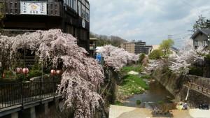 Photo_17-04-13-16-13-37.619